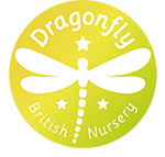 dragonfly-logo-footer